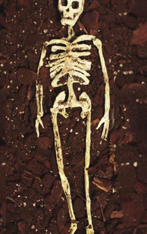 Burialteded